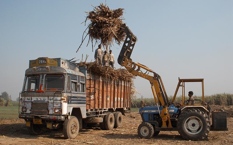 BULL Sugar Cane Loader - Sugar Cane Grab Loader Manufacturers